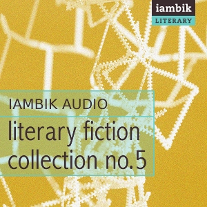 Cover photo of Literary Fiction Collection 5